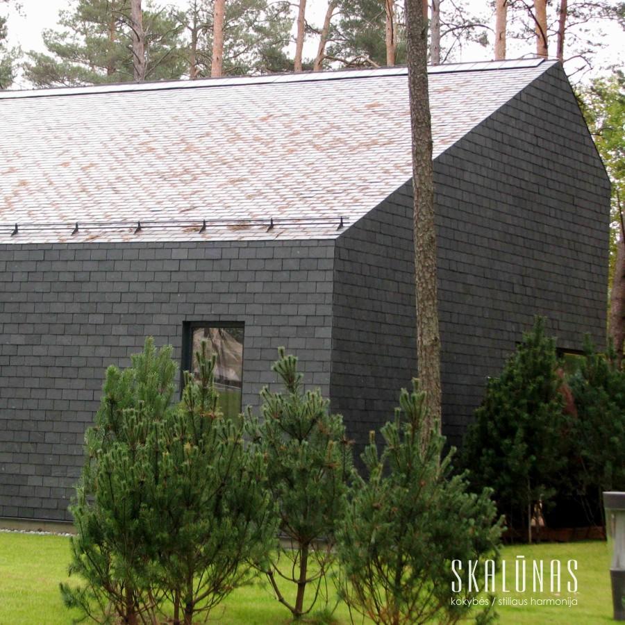 948 Fasadas, natūralus akmuo, skalūnas, 35x25, Vilnius 2013